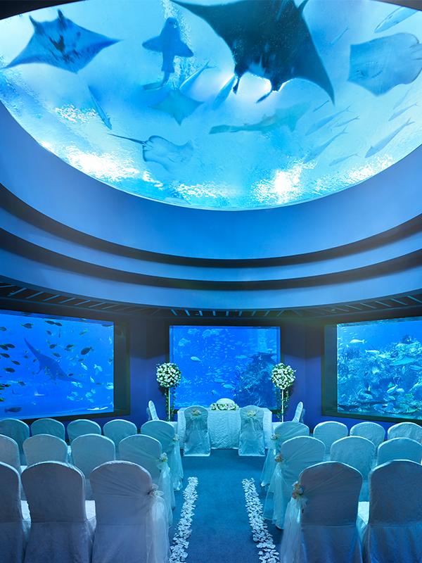 Ocean Dome, S.E.A. Aquarium
